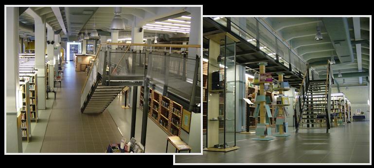 Kirjasto Lainan Uusiminen
