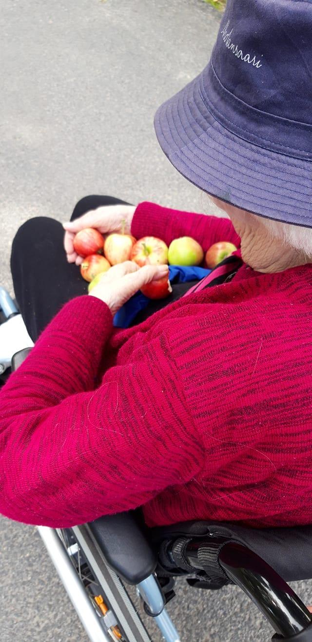 Vanhus pitää omenoita sylissä